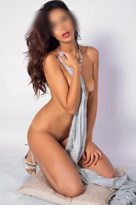 Diana (22), escort in Madrid, Madrid, Spain